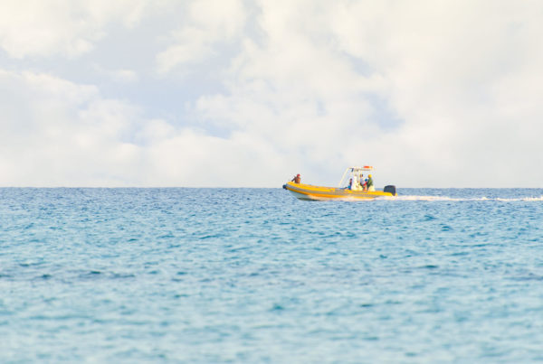 Inflatable boat in the sea